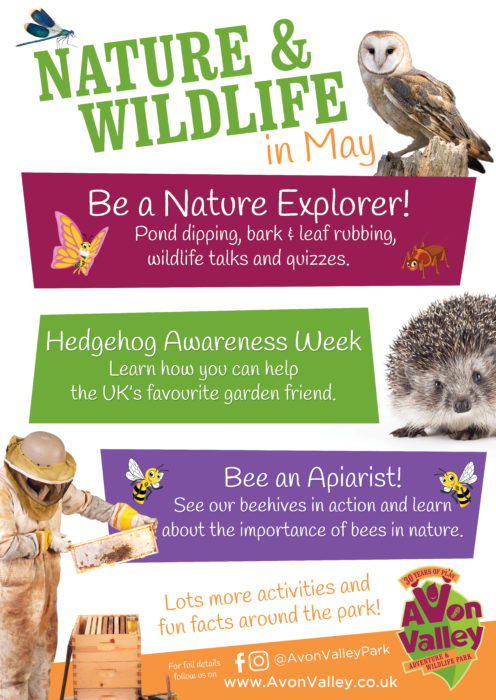 Nature & Wildlife month poster