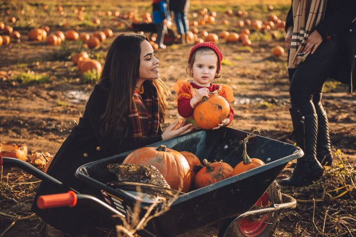 a toddler is dressed in a cute pumpkin outfit next to a wheelbarrow filled with pumpkins at avon valley pumpkin patch. An adult with long dark hair looks adoringly at her